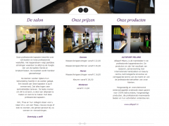 Website screenshot Kapsalon Duett